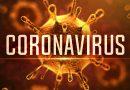 Apa sih Virus Corona itu?